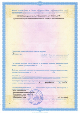 лицензия 2
